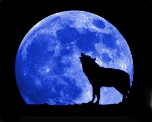 Blue-Moon-and-Wolf