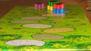 boardgamesviet.com_ribbit_006